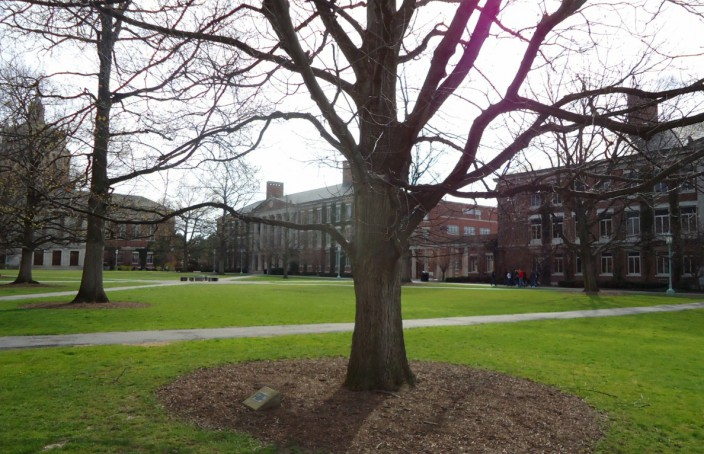 Main_quad_and_trees_at_the_University_of_Rochester