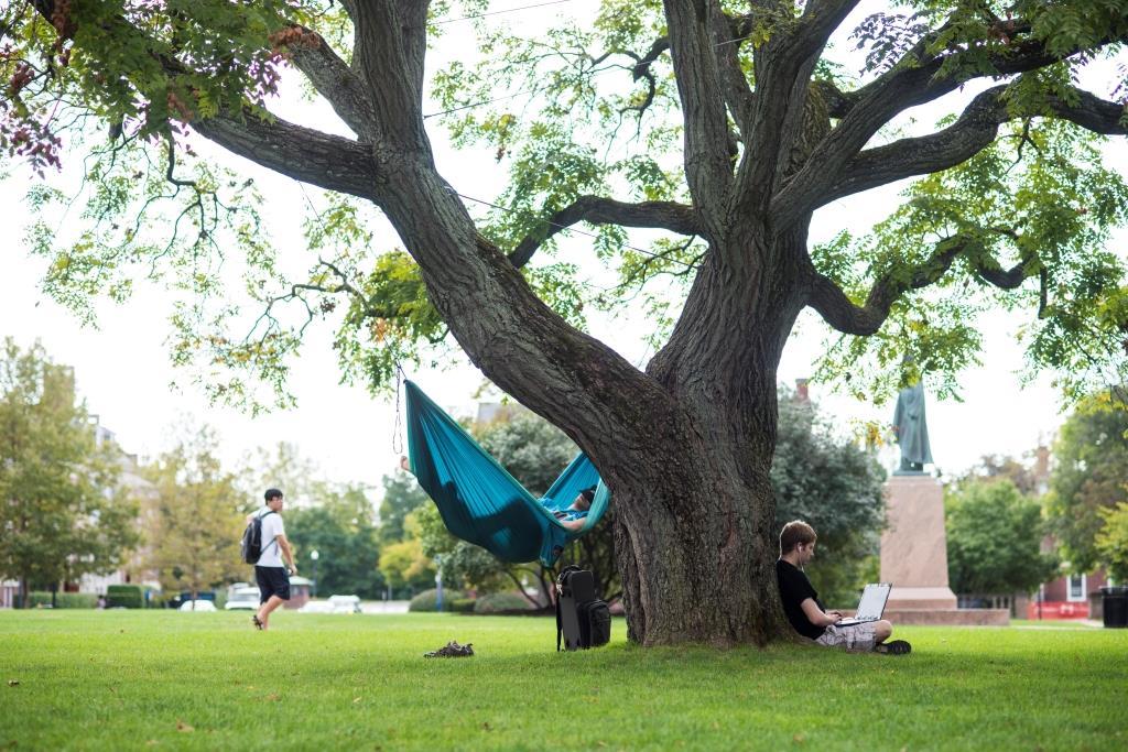2015-09-22_wilson_quad_tree_166