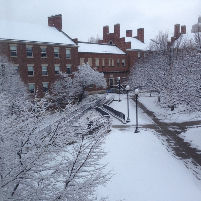 The Freshman Quad, covered in snow...
