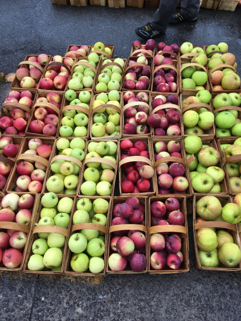 Large selection of red and green apples in baskets